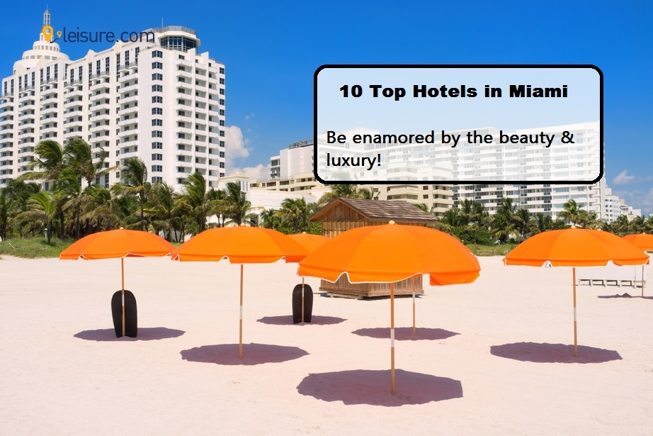 Looking for Top Hotels in Miami- Check Out Our List!